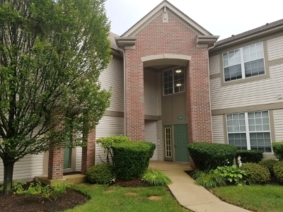 Crystal Lake Condo/Townhouse For Sale: 1615 Carlemont Drive #D