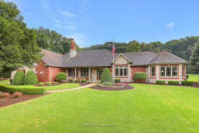 Mokena Single Family Home For Sale: 19409 South Hunter Trail