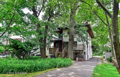 River Forest Single Family Home For Sale: 29 Thatcher Avenue