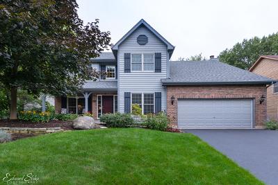 Crystal Lake Single Family Home For Sale: 466 Kelly Lane