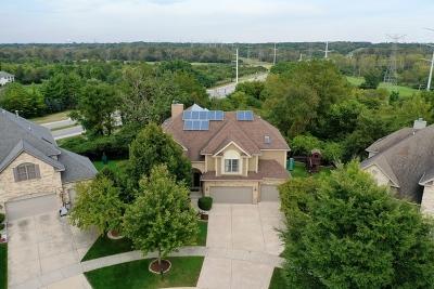 Naperville Single Family Home For Sale: 3805 Gladstone Drive