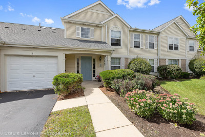 Plainfield Condo/Townhouse For Sale: 13842 South Bristlecone Lane #B