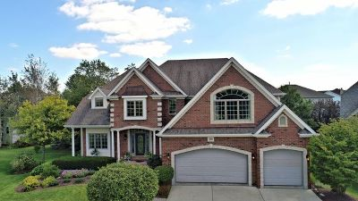Naperville Single Family Home For Sale: 3008 Goldenglow Court
