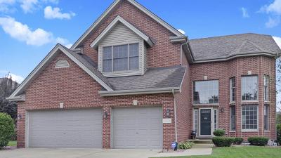 Homer Glen Single Family Home For Sale: 14086 Camdan Road
