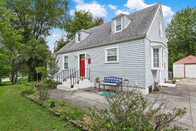 New Lenox Single Family Home For Sale: 218 South Prairie Road