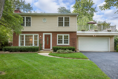 Glen Ellyn Single Family Home For Sale: 22w407 Tamarack Drive