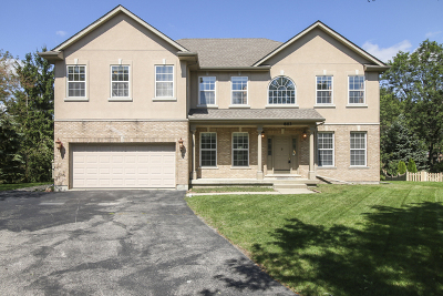 Grayslake Single Family Home For Sale: 883 Jeanne Court
