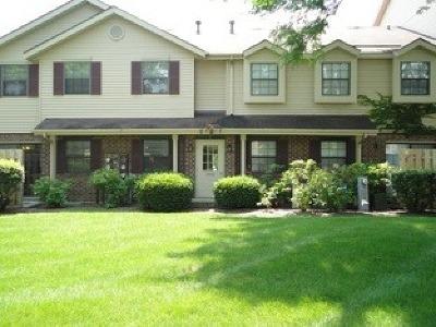Naperville Rental For Rent: 1500 West Jefferson Avenue #B