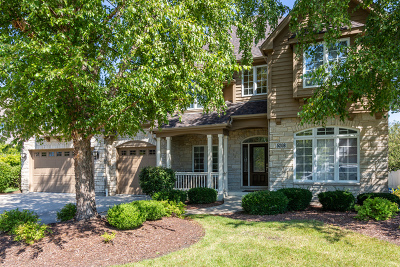 Naperville Single Family Home New: 5208 Bamboo Lane
