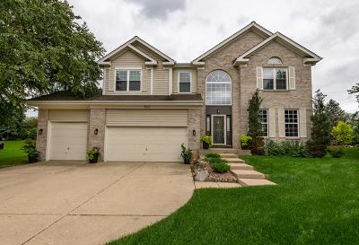 Crystal Lake Single Family Home For Sale: 657 Providence Lane