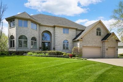 Carpentersville Single Family Home For Sale: 3280 Oak Knoll Road