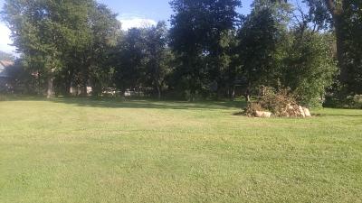 Braceville Residential Lots & Land For Sale: Lts21&22 Merrill Street