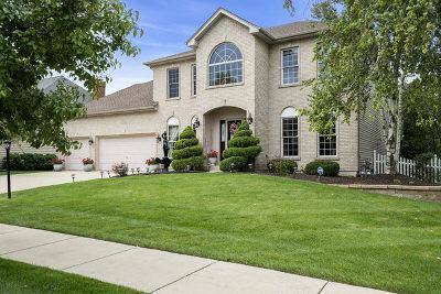 Naperville Single Family Home For Sale: 3848 Sunburst Lane
