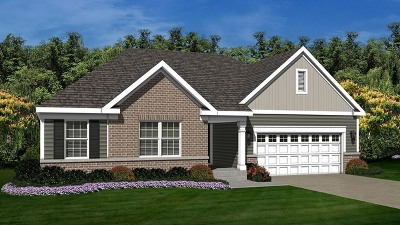 Plainfield Single Family Home For Sale: 26917 Summergrove Drive