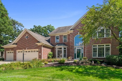 Carol Stream Single Family Home For Sale: 627 Christopher Lane