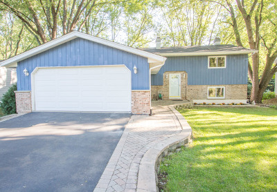 Mundelein Single Family Home For Sale: 1080 Killarney Pass Drive