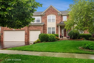 Vernon Hills Single Family Home For Sale: 1684 North Cypress Pointe Drive