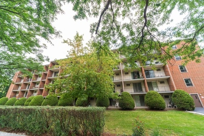 Elmhurst Condo/Townhouse New: 255 South West Avenue #209
