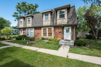 Cook County Condo/Townhouse New: 626 Newton Court