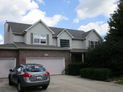 Plainfield Single Family Home For Sale: 24134 Simo Drive