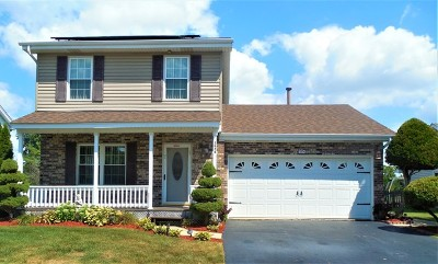 Aurora Single Family Home For Sale: 1674 Kautz Road