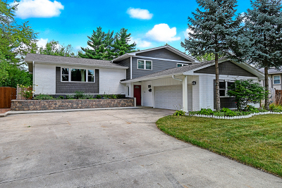 Downers Grove Single Family Home For Sale: 736 72nd Street