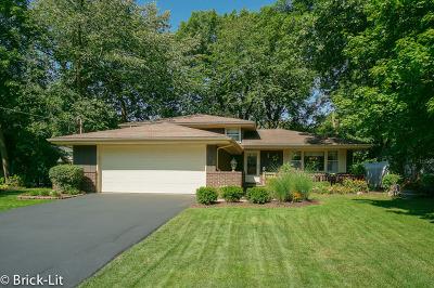 New Lenox Single Family Home For Sale: 153 Kimber Drive