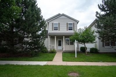 Romeoville Single Family Home For Sale: 178 Mountain Laurel Court