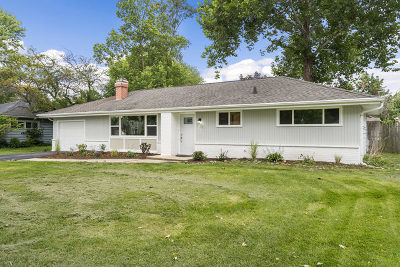 Wheaton Single Family Home For Sale: 528 Countryside Drive