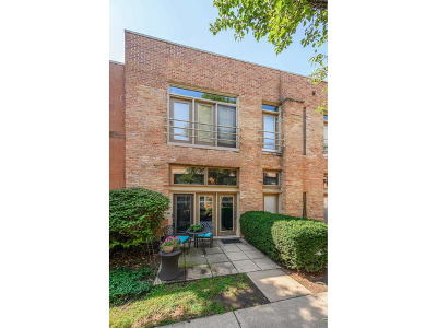 Condo/Townhouse New: 1100 West Cornelia Avenue #115