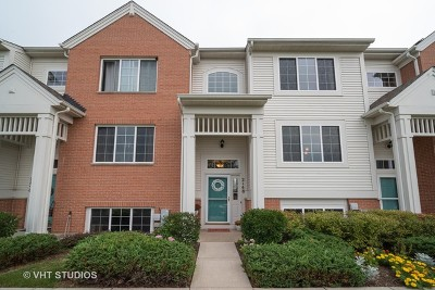 McHenry Condo/Townhouse For Sale: 2148 Concord Drive