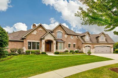 Algonquin Single Family Home For Sale: 11 Covington Court