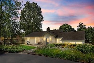 Barrington Single Family Home For Sale: 725 Dundee Avenue