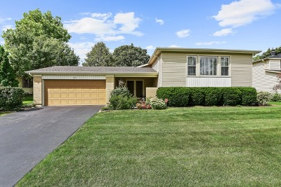 Bolingbrook Single Family Home For Sale: 514 Whitehall Way