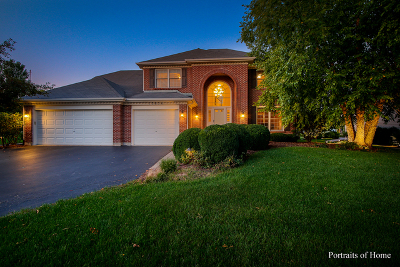 Plainfield Single Family Home For Sale: 13654 Golden Meadow Drive
