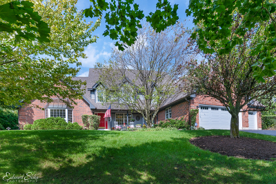 Lakewood Single Family Home New: 7206 Bonnie Drive