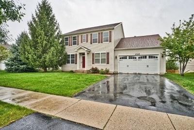Wauconda Single Family Home For Sale: 2765 Liberty Lakes Boulevard