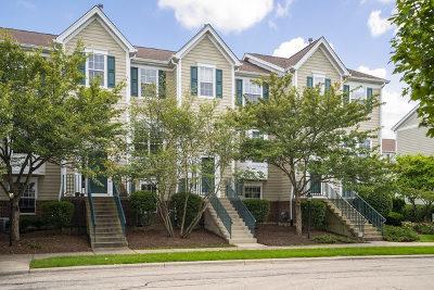 Aurora Condo/Townhouse New: 2432 Courtyard Circle #2