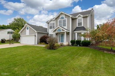 Island Lake Single Family Home For Sale: 4601 Vista Drive