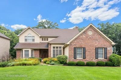 Crystal Lake Single Family Home For Sale: 3320 Thunderbird Lane