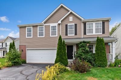 Pingree Grove Single Family Home New: 640 Canterbury Lane