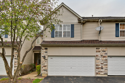 Grayslake Condo/Townhouse For Sale: 842 Amelia Court