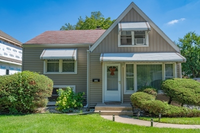 Elmhurst Single Family Home New: 169 South Villa Avenue