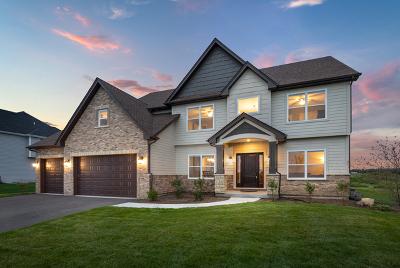 Oswego Single Family Home For Sale: 5022 Carpenter Avenue