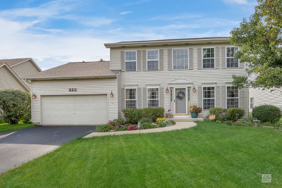 Oswego Single Family Home For Sale: 321 Mustang Drive