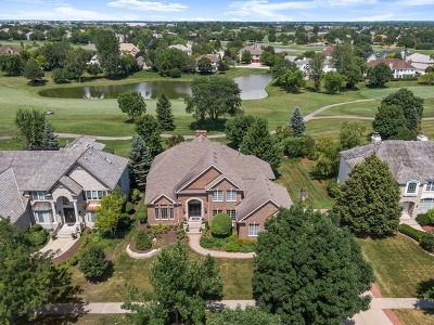 Naperville Single Family Home For Sale: 2363 Fawn Lake Circle