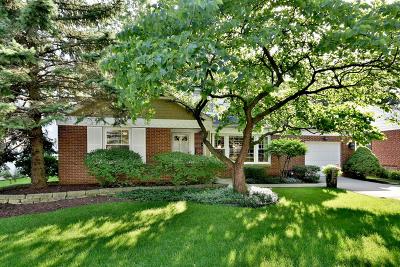 Elmhurst Single Family Home New: 442 South Stratford Avenue