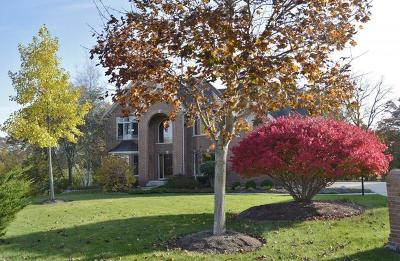 Carpentersville Single Family Home New: 3262 Black Cherry Circle