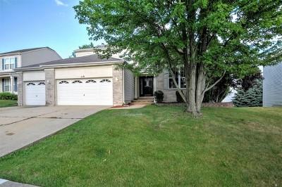 Streamwood Single Family Home New: 119 Buckskin Lane