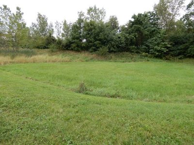 Residential Lots & Land For Sale: 8445 Corcoran Road